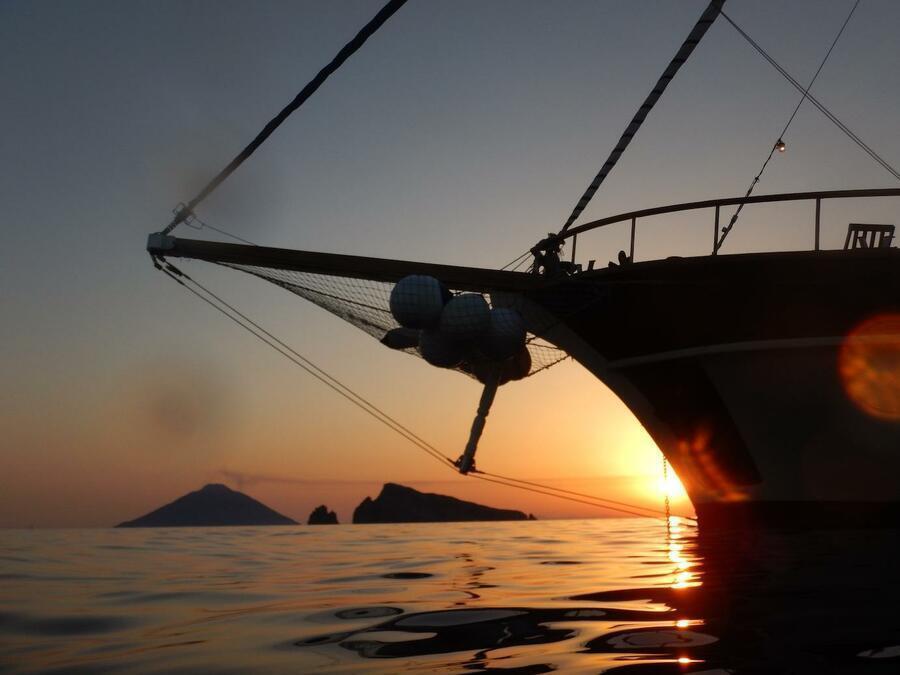 Technicalboat (MYBUBU)  - 25