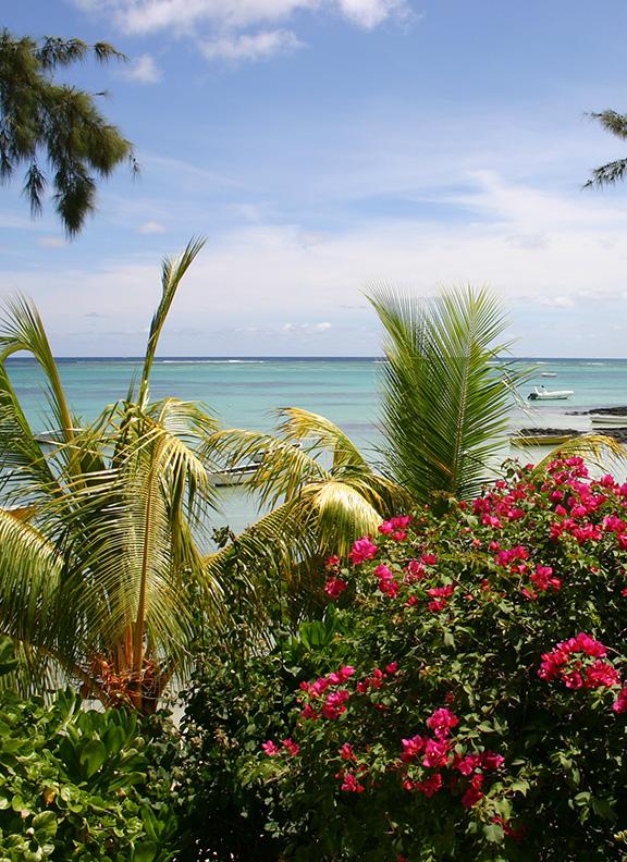 Маврикий cruise main