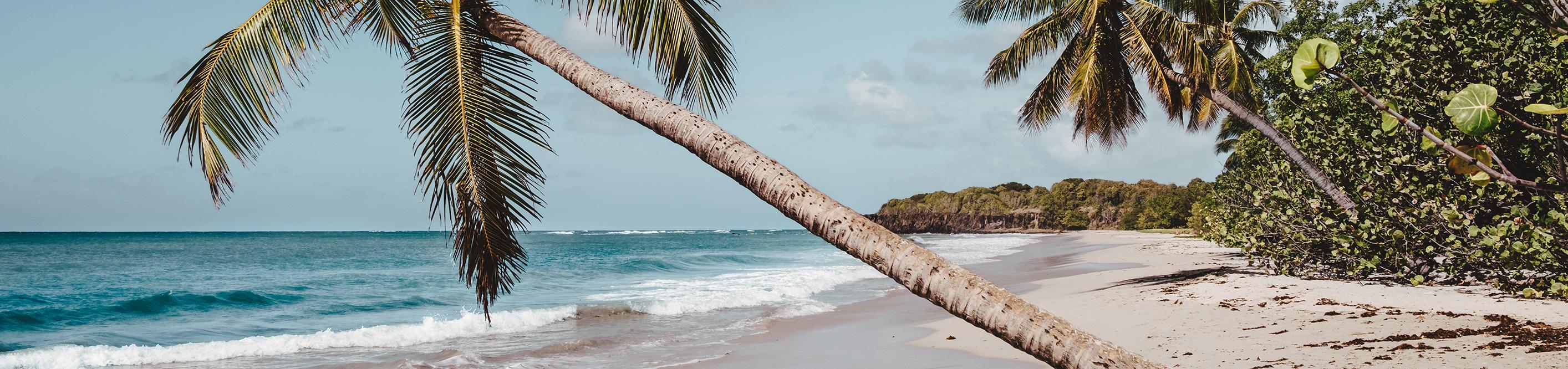 Морской круиз на Мартинике